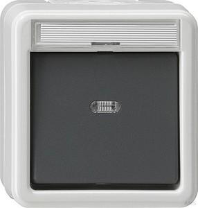 Gira 011630 Wippschalter Kontroll Wechsel wassergeschützt Aufputz Grau
