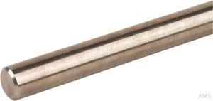 Dehn+Söhne Anschlussfahne NIRO (V4A) Rd 10mm L1,5m 860 115
