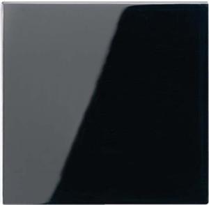 Jung Wippe schwarz für Taster A 590 SW