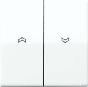 Jung Wippe Symbole alpinweiß (aws) für Taster AS 591-5 P WW