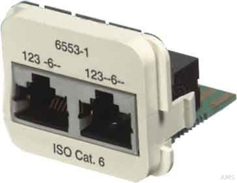 Tyco Electronics Doppel-Einsatz Kat. 6A reinweiß (rws) 2x10/100BT 0-1