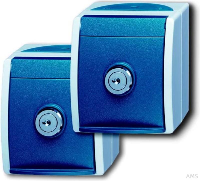 busch jaeger schuko steckdose 2xap 2 gleiche schl sser 20 20 ewsl 53. Black Bedroom Furniture Sets. Home Design Ideas