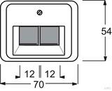 Busch-Jaeger Zentralscheibe Titan für UAE-Anschlussdo. 2-fach 1803-02-266