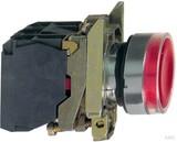 Schneider Electric Leuchtdrucktaster rot LED Modul 24V 1S 1Ö XB4BW34B5