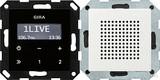 Gira 228003 Unterputz Radio RDS System 55 Reinweiß glänzend