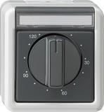 Gira 032130 Zeitschalter 120 Minuten wassergeschützt Aufputz Grau