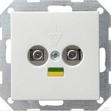 Gira 040503 Potentialausgleich 2fach System 55 Reinweiß glänzend