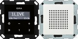 Gira 228003 Unterputz Radio RDS System 55 Reinweiß glänzend - Vorführgerät