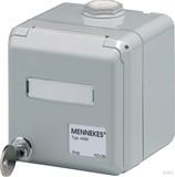 Mennekes Datendose Cepex lichtgrau für 2 Module 4375G