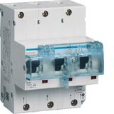 Hager SLS-Schalter 50A,3polig,E-Charak. HTN350E