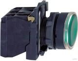 Schneider Electric Leuchtdrucktaster grün LED MODUL 24V/1S,1Ö XB5AW33B5