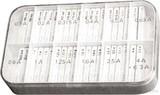Scharnberger+Hasenbein Sicherungssortiment 5 M 5x20 200 Feinsich. 60610
