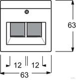 Busch-Jaeger Zentralscheibe dav/sws für UAE-Anschlussdo. 2-fach 1803-02-84