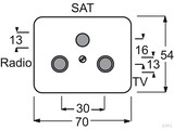 Busch-Jaeger Zentralscheibe Titan mit 3Anschl. Rad. TV/SAT 1743-03-266