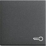 Gira 028728 Wippe Symbol Schlüssel System 55 Anthrazit