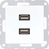 Jung Multimedia-Anschluss alpinweiß (aws) 2 x USB mit Tragring MA A 1153 WW