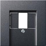 Gira 027628 Abdeckung TAE+Stereo+USB System 55 Anthrazit